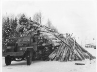40 s truck with dumped load of long logs