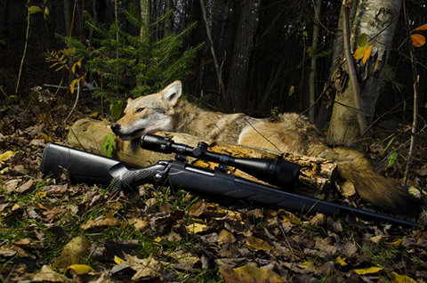 mid-maine-outfitters-lodge