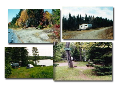 camping-collage